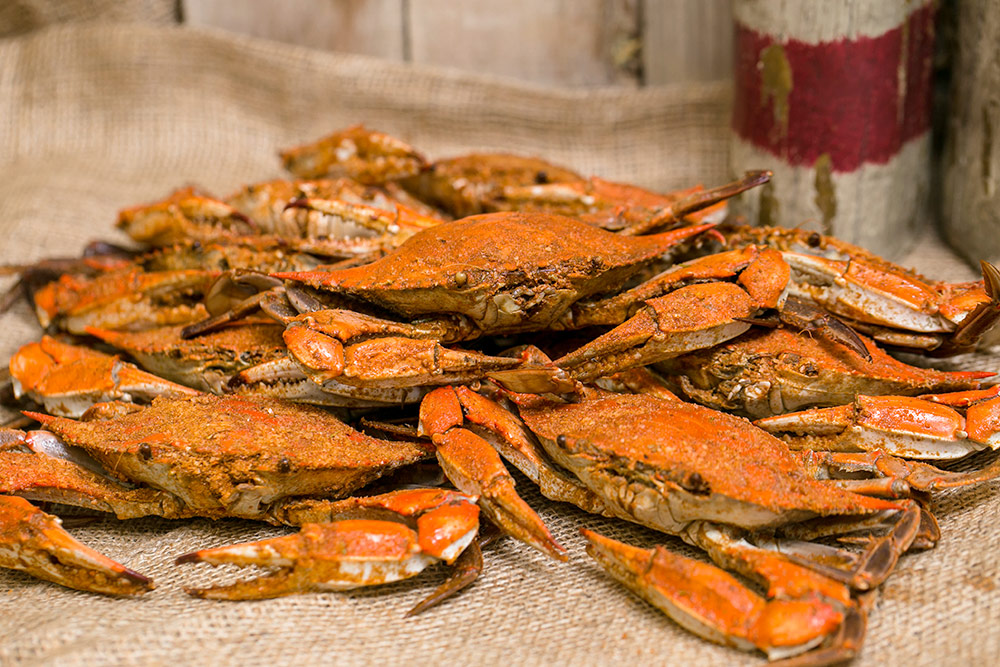 Steamed Crabs – Capt. Neill's